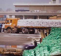 DES ASSOCIATIONS ACCUSENT : L'aide humanitaire est détournée au Sénégal