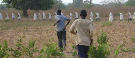 INITIATION TRADITIONNELLE OU « FOUTAMPAF » A DIACOUNDA: 300 circoncis font leur entrée au bois sacré