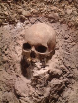 DECOUVERTE: Les premiers Européens auraient été cannibales