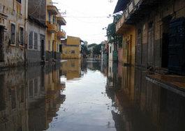 Leurs maisons envahies par les eaux de pluie : Pikine Est se vide de ses habitants