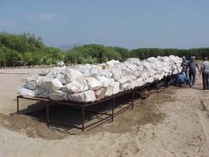 CHANVRE INDIEN : Plus d'une tonne de drogue saisie à Sendou