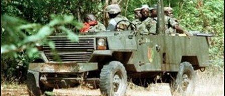 Sénégal : l'armée quadrille la Casamance