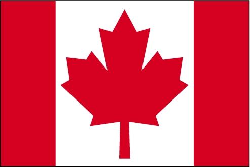 Pour faire face à la fuite des cerveaux : Les Canadiens offrent 200 bourses à des Sénégalais