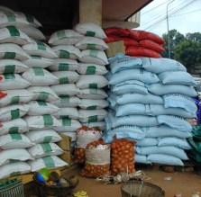 COMMERCIALISATION DU RIZ DE LA VALLEE : Les producteurs marchent pour des mesures immédiates