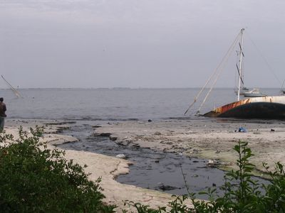 PROTECTION DE LA NATURE AU SENEGAL La pollution et la préservation de l'environnement préoccupent les acteurs