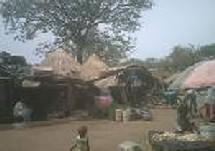 PERDU DANS LA FORET DE KEDOUGOU DEPUIS PLUS D'UN SIECLE: Qui connaît le village de Tinkito