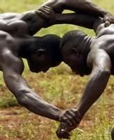LUTTE - CHAMPIONNAT D'AFRIQUE (26 au 30 juin à Dakar) : Les « Lions » sur la dernière ligne droite