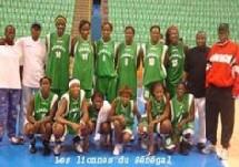 """BASKET SENEGAL/TUNISIE 77-55: Les """"Lionnes"""" en quarts de finale"""