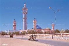 Reportage : A La Decouverte D'une Ville Religieuse - Voir Touba Et Mourir