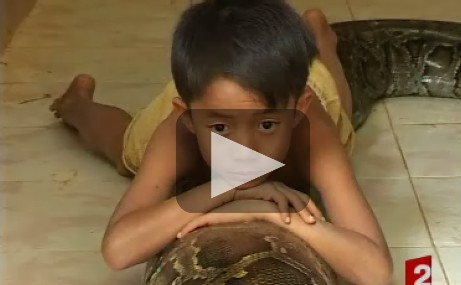 [VIDEO] Un enfant de 7 ans a un ami inhabituel: un serpent de 5 mètres