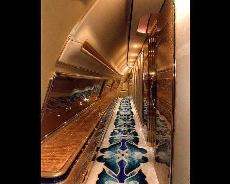 [ PHOTOS ] Images de l'avion du Sultan de Brunei ''devenu'' le nouvel avion de Wade (Un vrai régal pour les yeux)