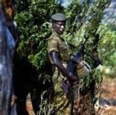 CASAMANCE/ATTAQUE À MAINS ARMÉES À SARÉ BOUBOU: Des biens emportés et des concessions brûlées