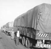 67 tonnes de riz subventionné saisies à la frontière avec la Mauritanie