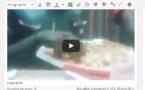 Vidéo – Exclusive « Voilà comment on mange un pizza » Regarder