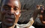 Le séropositif surnommé « la Hyène » qui a défloré 104 adolescentes alpagué