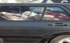 PHOTOS - Ca se passe au Sénégal : une voiture délabrée remplie de viande que l'on suppose destinée à la consommation, sans remplir les normes de conservation