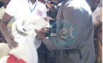 PHOTOS - Le mouton Ladoum «Tapha» refusé au lutteur Modou Lo au prix de 10 millions de F CFA…