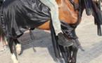 PHOTOS - Rassemblement de Y en a Marre: Quand un manifestant débarque avec son cheval