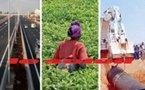 'Africa Awards for Excellence' : Trois projets sénégalais primés par la Banque mondiale