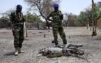 Ndjamena instaure l'état d'urgence dans la région du lac Tchad