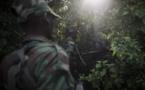 RDC: une attaque rebelle fait au moins 14 morts