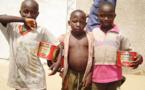 Un chercheur Sénégalais attire l'attention sur la possible utilisation des enfants  Talibés comme kamikazes