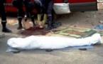 Meurtre : Le marchand ambulant avait poignardé son ami pour une plaisanterie
