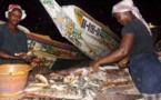 Dossier: Pourquoi plus de 60% des PME-PMI sénégalaises sont des mort-nés?