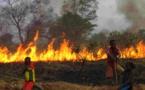 Il creuse des trous et y allume le feu pour empêcher des enfants d'entrer dans son champ: 3 morts et 7 blessés enregistrés