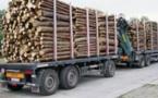 Trafic de bois : L'Armée saisit une dizaine de camions gambiens
